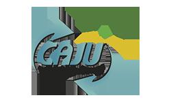 Caju Transfers