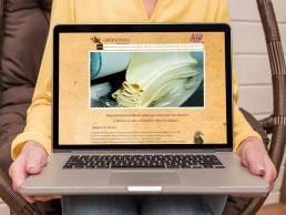 Centésimo Web Site